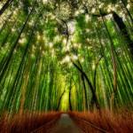 5 Easy Ways to Enhance Your Spirituality